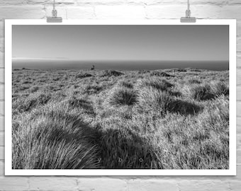 Point Reyes Black and White Art Photography, Marin County Picture, California Coast Art, Pt Reyes Art Print, California Seascape Print