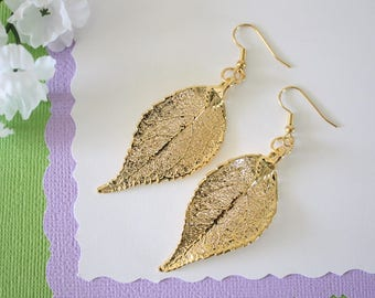 Gold Leaf Earrings, Evergreen Leaf , Real Leaf Earrings, Real Gold Evergreen Leaf, Gold, Nature, LEP63