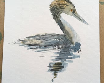 Grebe - water bird painting in watercolours