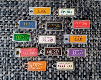 SET OF 13 // 1950's 1960's DAV License Plate Keychains // Disabled American Veterans // Illinois // Mini License Plate // Miniature