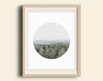 Alpine Forest Wall Print, Minimalist Modern Prints, Nature Photography, Wall Decor, Photography Wall Prints, White Print Art, Snow