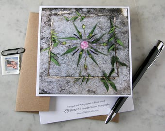 Morning Glory Mandala ~ One 5x5 Square Note Card (with envelope, blank inside, no message)
