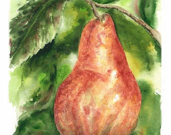 Original Watercolor Painting - 6.5x9.5 - Pear, kitchen Decor - Red, Green, Garden - Nature