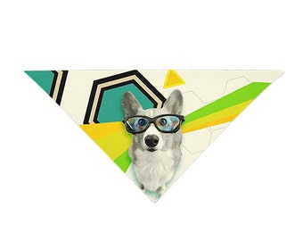 Hipster Corg