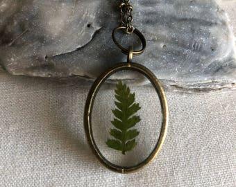 Fern necklace, dried fern botanical, tiny fern neckace