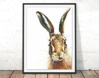 Hare Print, Rabbit Wall Art, Hare Painting, Rabbit Wall Hanging, Wildlife Print, Wild Animal Wall Print, Hare by Olivia Hicks