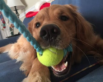 Dog Rope Toy with Tennis Ball