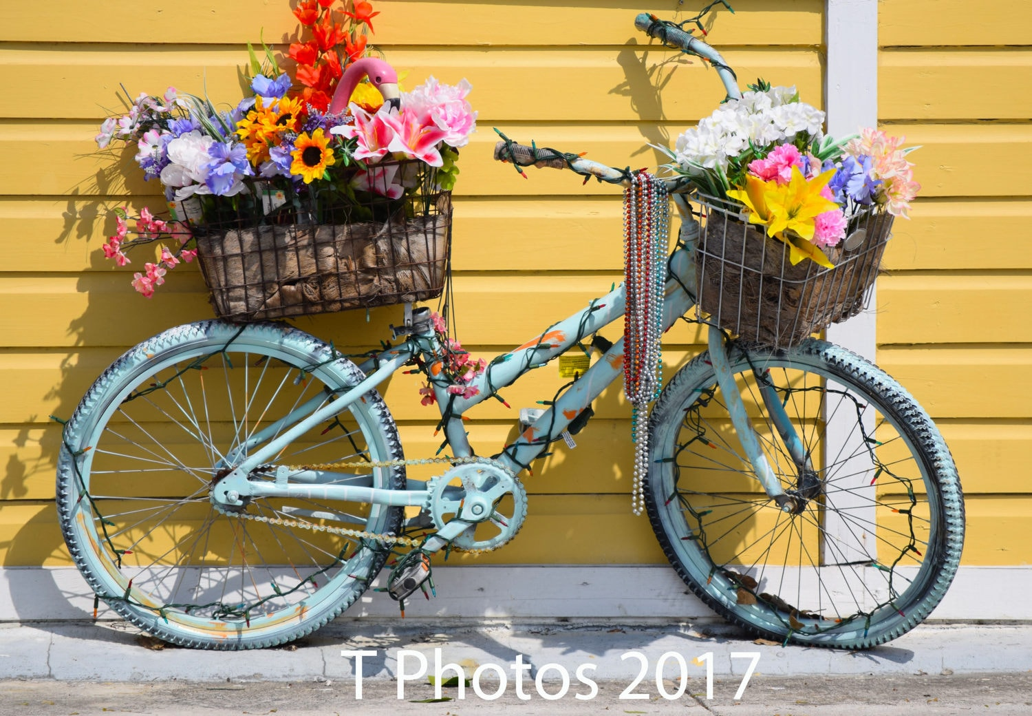 Flower Bicycle Fine art photography yellow flower bike