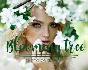 46 Blooming tree photo overlays, PNG overlays, flowers overlays, blooming tree branch overlays