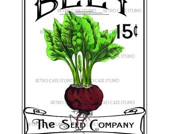 Vintage Illustration Beet Seed Packet Digital Download Vegetable Transfer Clip Art