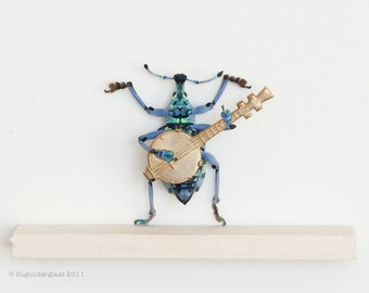 Framed Beetle Diorama Playing Banjo Insect Art Display