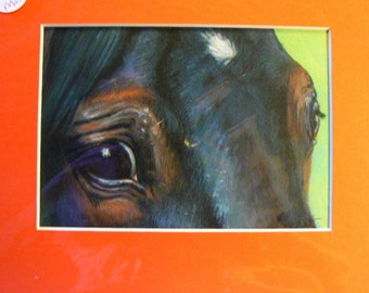 Brown horse eye reproduction 5x7 giclee print in 8x10 mat equine art by Kerry Nelson