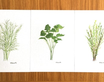 Herbs art Original watercolour paintings Herbs illustration Herbs paintings Dill Thyme Parsley set of 3 Botanical plants Gift for mum