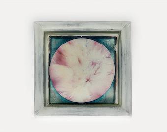 Primavera, fotografia di magnolia in fiore. Polaroid originale su tela, pronto da appendere con cornice. Mandala, regalo per buddisti.