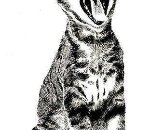 Yawning Kitten ink drawing (Deftones album)