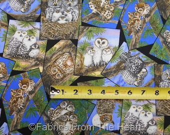 Owl Familes Picture Toss Hoot Forest Woods on BLack BY YARDS Elizabeth's Cotton Fabric