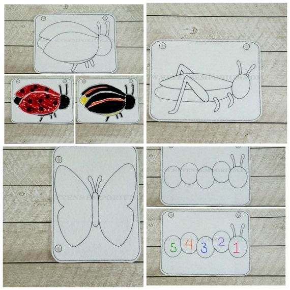 Errores básicos escarabajo mariposa polilla oruga saltamontes grillo ...