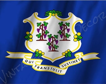 Connecticut State Flag on a Metal Sign