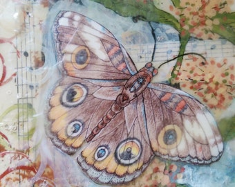 Butterfly Art Print Collage - Mixed Media - Wall Art Decor - Art for small Space - Original Art - New Apartment Gift - Housewarming Gift