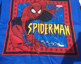 Spider-Man Pillow Panel: Superhero, Comic Book, Geek