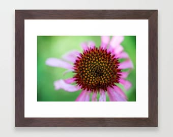 Nature Photography Prints For Nursery Wall Art Girl, Macro Photography Prints, Pink Flowers For Wall, Modern Photography, Green Wall Art