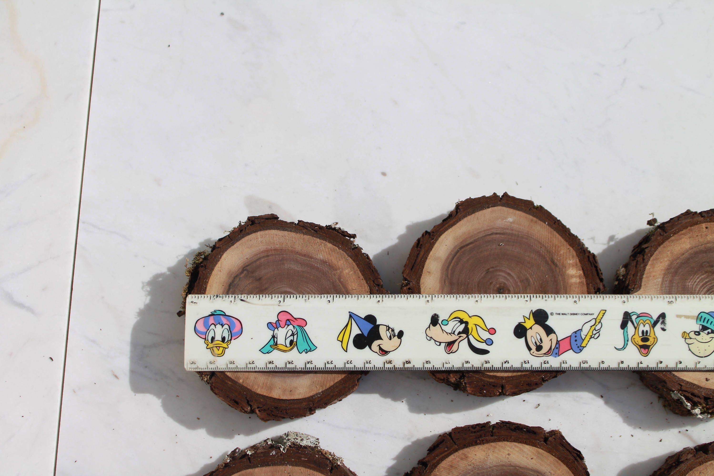 Walnut Slices, Wood coasters disk, centerpiece, DIY, Wedding decor ...