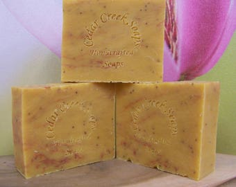 Raspberry Lemonade Soap - Natural Cold Processed Soap ~ Vegan Exfoliating Soap