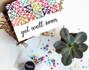 Mini Get Well Soon Gift Box - Get Well Gift | Get Well Card | Succulent Gift | Thinking of you Gift