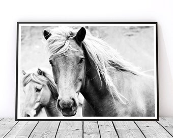 Horse Print, Black and White Photography, Horse Art, Horse Photography, Gift for Horse Lover, Black and White Print, Horse Decor, Wild Horse