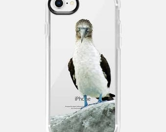 blue footed booby iPhone cases