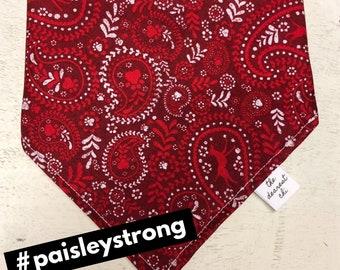 In Memory Of Paisley- Tie Bandana