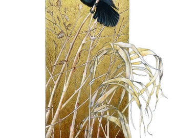 Limited edition Fine Art Print - 'From Dusk 'til Dawn' (the Grackle) by Claudia Hahn, hand gilded.