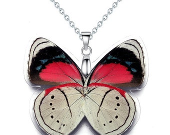 Real Butterfly Wing Necklace / Pendant  (WHOLE Perisama Sp Butterfly - W044)