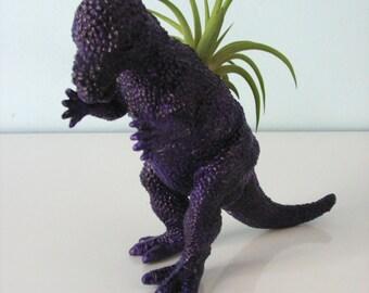 Upcycled Dinosaur Planter - Dark Purple Pachycephalosaurus with Tillandsia Air Plant