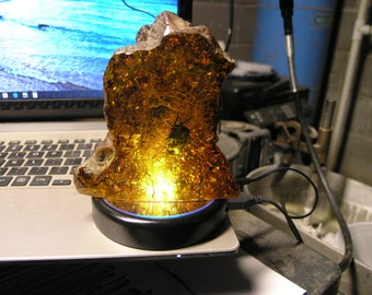 Collectibles Display Large Amber fossil with Light