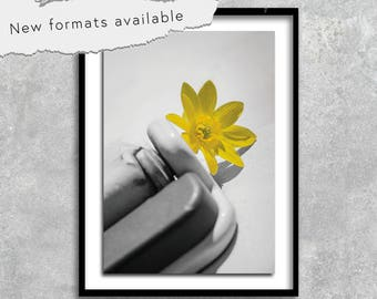poster poster photography modern contemporary flower printable instant download A1 A2 A3 A4 A5 16 x 20 18 x 24 24 x 36 50 x 70 60 x 90