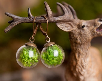 Moss earrings, gift for women, mom birthday gift, terrarium earrings, nature earrings, green earrings, dangle earrings, glass earrings
