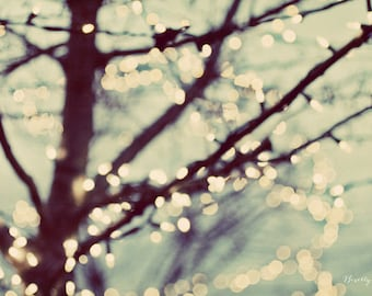 tree of lights, bokeh, abstract, dreamy, fine art photography