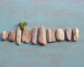 Pépites de bois flotté ovale rustique pour plage la création artistique, Mobile, plage de mariage Decor & décoration maison nautique BWN10