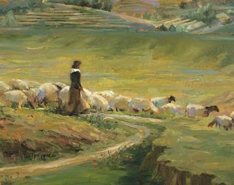 Hills of Bethlehem
