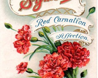 VINTAGE  POSTCARD, Love's Symbols, SALE! collected by junqueTrunque