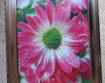 Daisy Pixel Picture
