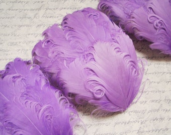 SET OF 5 - Lavender Light Purple Nagorie Curled Goose Feather Pads