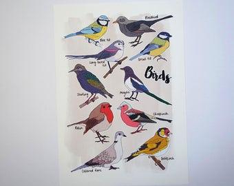 Birds Nature Prints