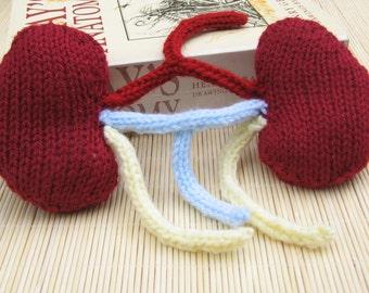 Set of Kidneys, Human Kidneys with Ureters & Veins, Knit Teaching Aid, Knitted Body Part, Knit internal Organ