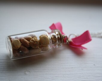 Kawaii Realistic Chocolate Chip Cookies in a Jar Necklace