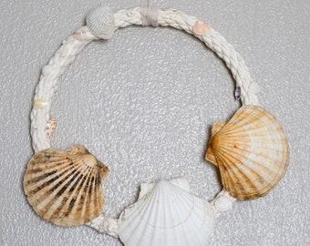 """Scallop Sea Shell Wreath - 12"""""""