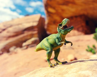 Dinosaur Photo, Fun Decor, Boys Room Art, Dino Decor, T-Rex Dinosaur Print, Kids Wall Art, Whimsical Wall Art, Paleontology