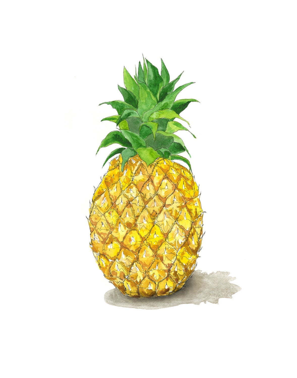 Pineapple a symbol for friendship and hospitality pia zoom buycottarizona Choice Image