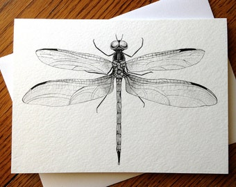 Dragonfly, Insect, Bug, Wings, 5 x 7 Black and White Illustrated Blank Card, Entomology